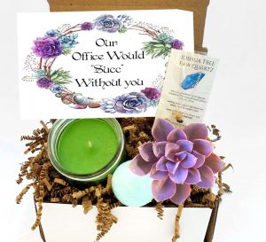 Our Office Would Succ Without You gift box