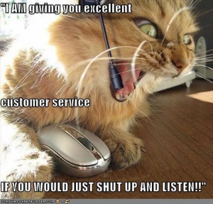 """Cat yelling, """"I AM giving you excellent customer service, if you would just shut up and listen!"""" into a phone"""