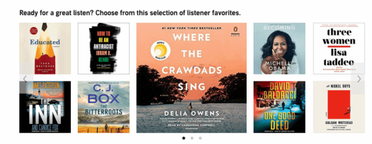Picture of novels on Audible
