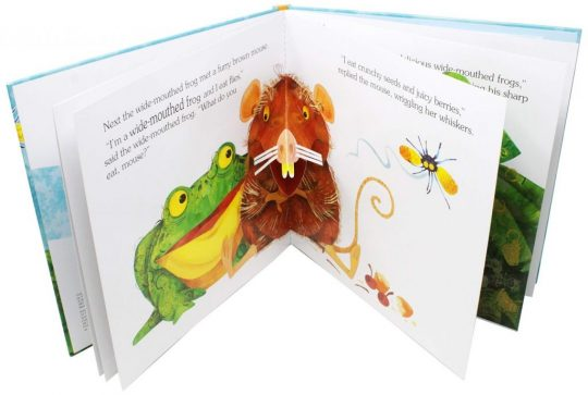 The Wide Mouthed Frog (A Pop-Up Book)
