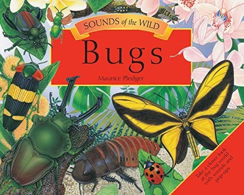 Sound of the wild Bugs