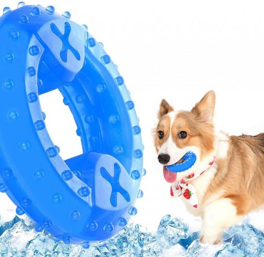 Freezable Pet Teeth Cooling Chew Toy