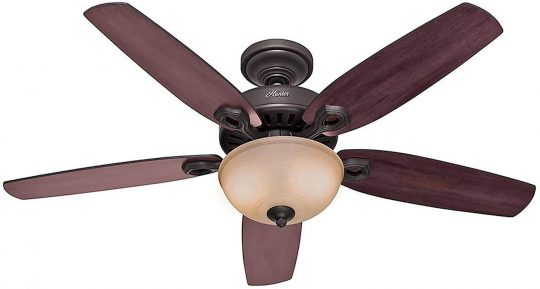 Hunter Transitional ceiling fan