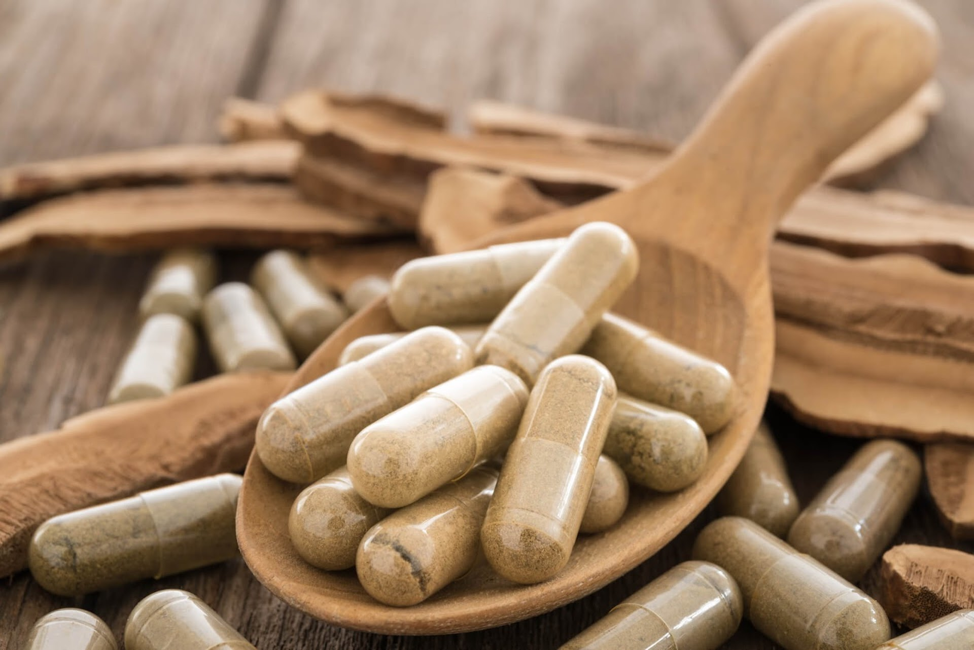 A wooden spoon with some mushroom extract powder in pill forms