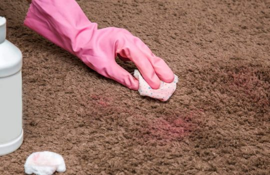 Woman getting nail polish out of carpet with a pink glove on