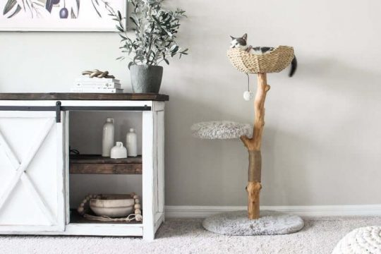 Wooden Branch Cat Condo