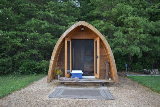 Tiny house in the middle of the woods