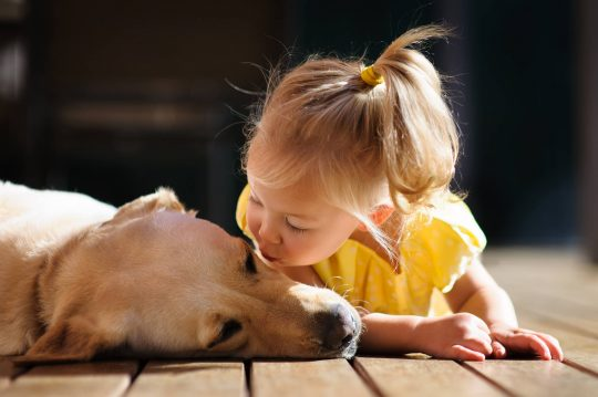 Toddler girl kissing her dog